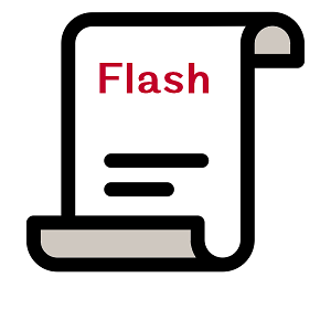 Flash - Copyright Mortgage - The Noun Project by Gregor Cresnar